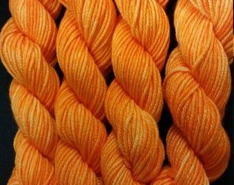 Maple City Yarn Minis