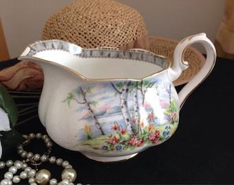 Royal Albert . Silver Birch. Custard jug