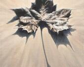 Leaf Print, Leaf Art, Fal...