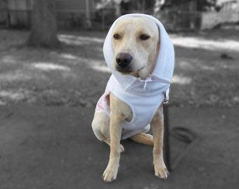 Winter Dog Coat | Warm Dog Jacket | Dog Coat | Dog Coat with Turtleneck | Fleece Dog Jacket | Quilt Dog Jacket