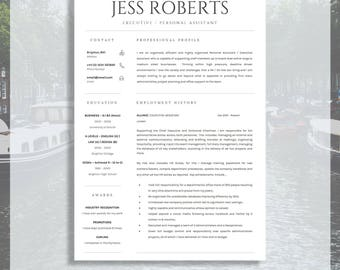 professional curriculum vitae professional cv resume template for ms word cover letter - Professional Template For Resume