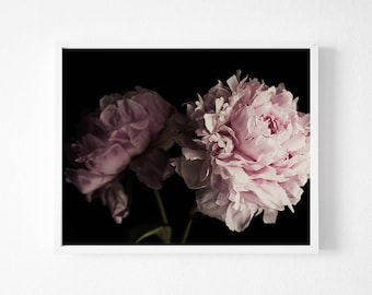 Peony Art, Black and Pink Photography, Peony Print, Floral Print, Peony Bouquet, Flower Printable, Black and Pink Poster, Large Wall Art