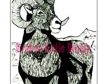 Bighorn Sheep (Print)