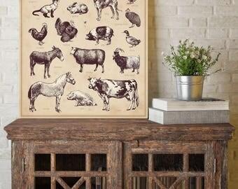 Farm Animals on Canvas, Farm Animals Canvas, Animals on Canvas, Vintage Wall Art, Vintage Wall Decor, Farm Animals on Canvas