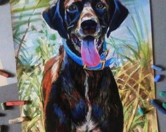 Pet portrait Custom portrait painting  dog portrait custom portrait from photo  cat portrait  Memorial Gift Idea