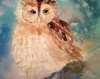 Original Owl watercolour & collage by Shari Hills