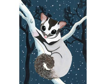 Australian Sugar Glider Art Print / wildlife / australian painting / possum / illustration / animal / australiana