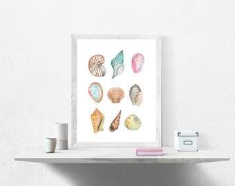 Sea Shells Watercolor Painting, Printable Digital Download, Wall Art, Home Decor, Printable Wall Art, Ocean Art, Sea Art