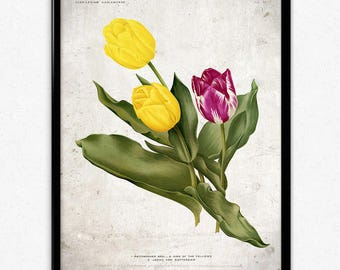 Tulips Purple and Yellow Flowers Vintage Print - Flower Poster - Flower Art - Flower Picture - Home Decor - Wall Art - Living Room
