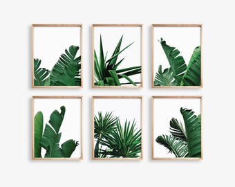 Palm Leaf Print, Palm Tree Print, Set of 6 Prints Banana Leaf Printable Art, Botanical Print, Tropical Print, Tropical Leaf,Digital Download