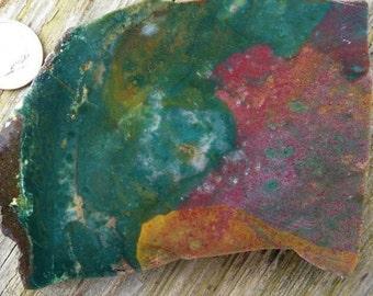 Beautiful Natural Fancy Jasper/Agate Slab, 106.1 Grams