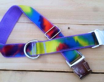 Tie dye, tie dye dog collar, summer, summer collar, bright dog collar, red, orange, green, blue, purple, yellow, lavender, metal buckle