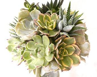 Le Bouquet de la Mariée Gaïa : bouquet de succulentes en camaïeu de verts, parure de mariage, bouquet végétal, plantes grasses