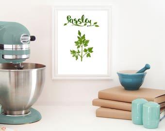 parsley print, botanical herb prints, Herbs kitchen wall décor, Herbs kitchen art ,Herbs kitchen art, Herbs kitchen wall décor