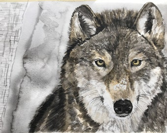 Gray Wolf in winter watercolor print