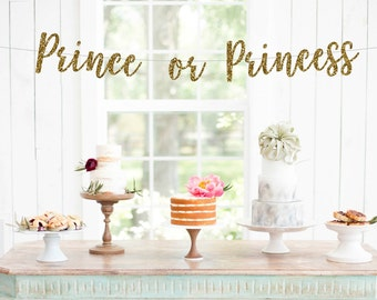 Prince or Princess Banner, Gender Reveal Banner, He or She Banner, Boy or Girl Banner, Baby Photo Prop, New Baby, Baby Sprinkle