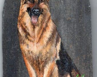 German Shepherd acrylic painting on Slate