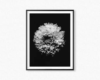 Flower print, black and white flower photography, flower wall art, botanical print, minimalist flower
