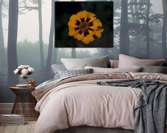 Yellow Flower Home Decor, Yellow Flower Livingroom Decor, Micro Photography, Yellow Flower Photography, Digital Download, Printable Art