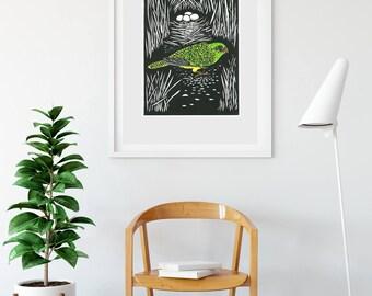 Night Parrot/ Original print/ hand coloured/ hand printed/ 30cm x 19cm/ Australian birds/ Birds/ endangered bird/ ritual work/ sacred space