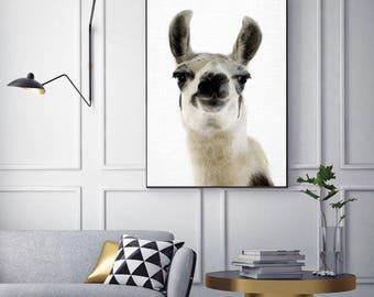 SALE 20% OFF! Alpaca Print, Nursery Animal Decor Wall Art, Printable, Digital Download, Modern Minimalist, Black and White