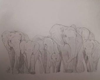 Herd of Elephants Pencil Drawing