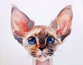 Watercolor art, original Aquarelle, cat Sphinx.