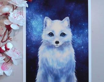 Arctic fox Art print