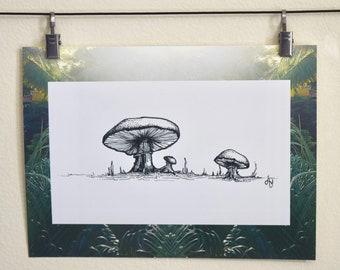 Mushroom Fam
