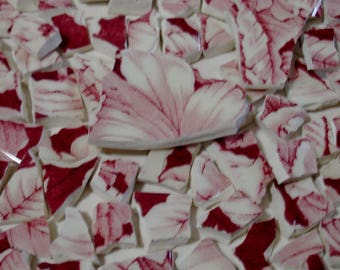 Mosaic Tiles Pink & Red Toile Transferware Broken Plate-Tesserae  Tiles and Pieces