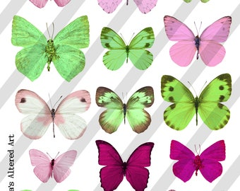 Digital Collage Sheet, Butterflies in pink and green (Sheet no. O258) Instant Download, PNG Sheet Included