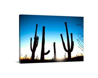 Cactus Print, Desert Photography, Arizona Desert, Tucson, Sunset Art, Silhouette Art, Cacti, Blue Art, Sonoran Desert, Art on Canvas