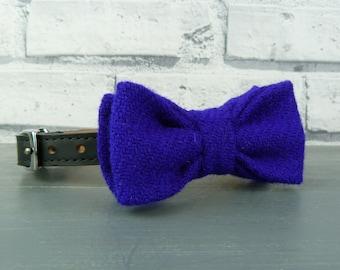 Dog Bow Tie - Harris Tweed, Royal Blue , Harris Tweed Bow Tie for Dogs