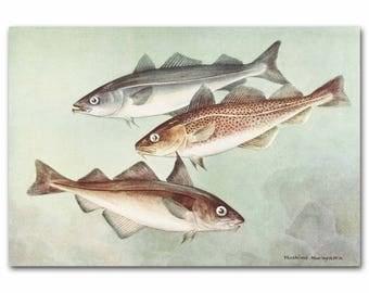 Fish wall decor | Etsy