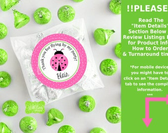 Pink Ladybug Favor Stickers - Ladybug Favor Stickers - Ladybug Sticker - Pink Ladybug Gift Stickers - Digital & Printed