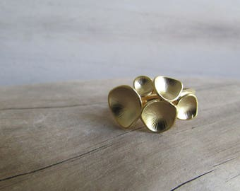 Adjustable ring curved