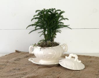 White Ceramic Tureen, Serving Dish, Shabby Chic Planter