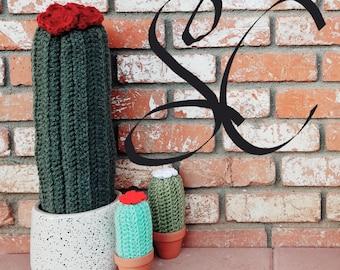 Cute Cactus Crochet Knit Amigurumi Pottery Home decor