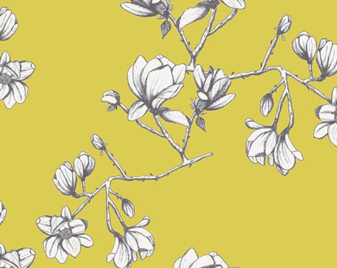 Magnolia Study in Zest- Wild Bloom by Bari J for Art Gallery