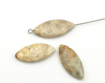 3 fossil coral stone bead/ 10mm x 30mm/ marquise shape  #PP175