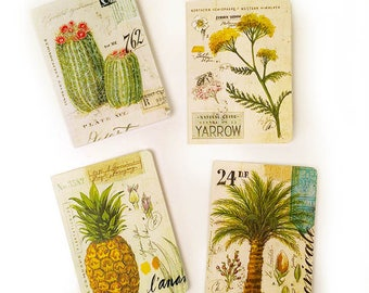 Botanical Deluxe Assorted Notecards, Barrel Cactus Stationery, Pineapple Greeting Cards, Palm Tree Blank Cards, Botanical Stationery