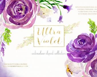 Ultra violet watercolour flowers clipart, hand drawn: Elements. Purple, lavander and cream. Peonies, roses, eggplant. Pantone colour of 2018