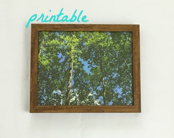 Instant Download Printable Art, Tree Art Print, Tree Wall Art, Printable Art, Nature Photography, Christmas Gift, Nature Print, Forest Print