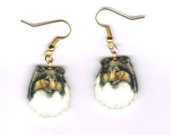 Collie Earrings Sable Beautiful Portrait