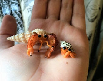 Polymer Clay Hermit Crab Family