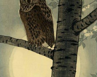 "Japanese Art Print ""Owl in Moonlight"" by Kasamatsu Shiro, woodblock print reproduction, fine art, asian art, cultural art, moon, blossoms"