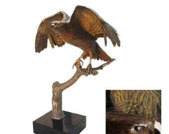 Limited Edition Wildlife Bronze Sculpture of a Red Tail Hawk in detail