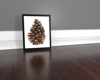 Art Print - Pine Cone - Giclee archival quality prints on Somerset Velvet Paper. Excellent for decor gift or adding a touch of nature.