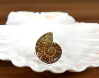 Fossil Ammonite Ring -  Size: 7