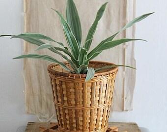 Vintage Small Woven Rattan Planter Basket
